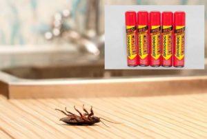 Как избавиться от появившихся тараканов? Народные способы или вызов специалиста?