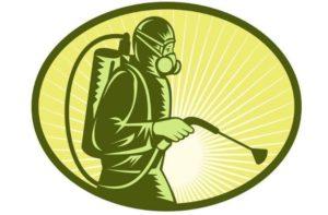 Как избавиться от жуков в доме? Виды жуков и приносимый ими вред: Способы борьбы